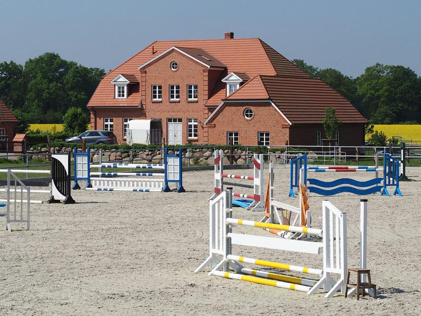 AKH Pferdesport Angebot Ausbildung Beritt Turnier