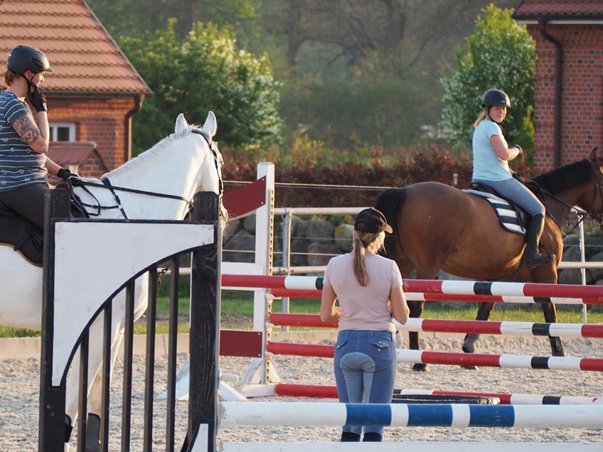AKH Pferdesport Angebot Reitunterricht