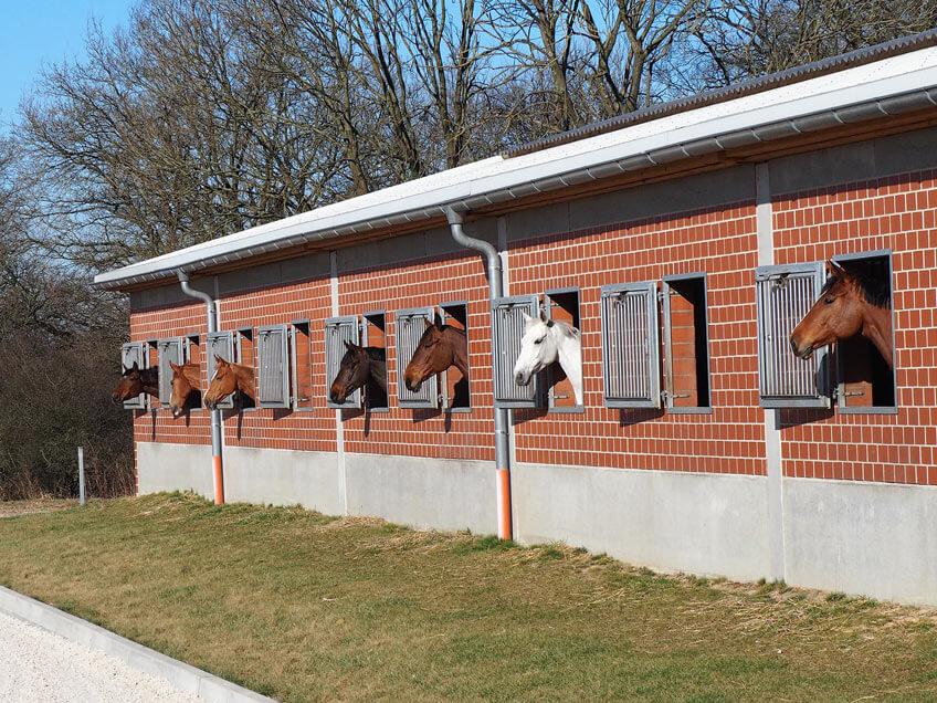 AKH Pferdesport Kontakt Stall