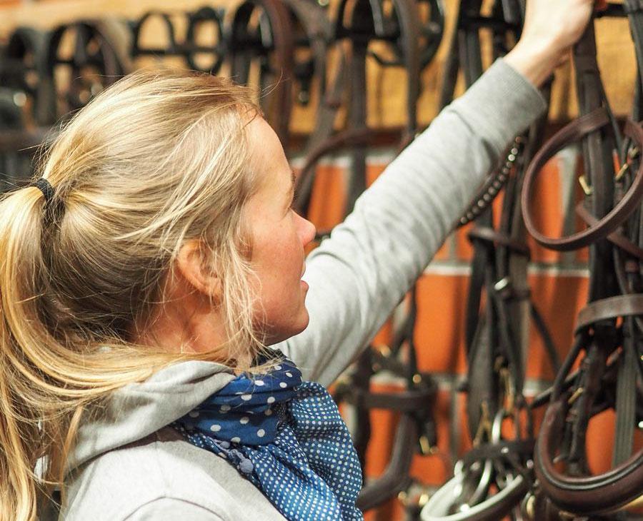 AKH Pferdesport Partner
